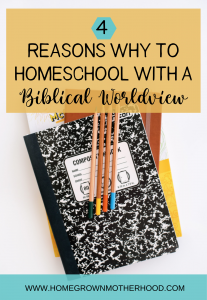 4 Reasons Why To Homeschool With A Biblical Worldview